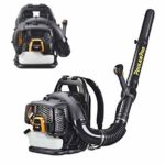 Best Backpack Leaf Blower For Your Lawn